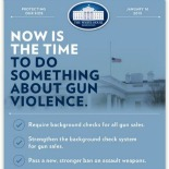 Now is the Time: Curbing Gun Violence